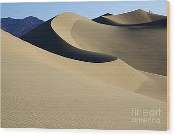 The Mesquite Dunes Of California Wood Print by Bob Christopher