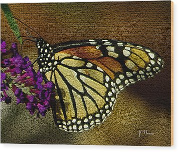 The Monarch / Butterflies Wood Print by James C Thomas