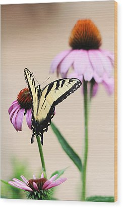 Wood Print featuring the photograph The Swallowtail by Trina  Ansel