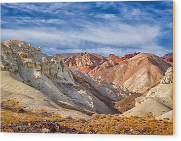 Wood Print featuring the photograph The Monte Cristos Central Nevada by Janis Knight