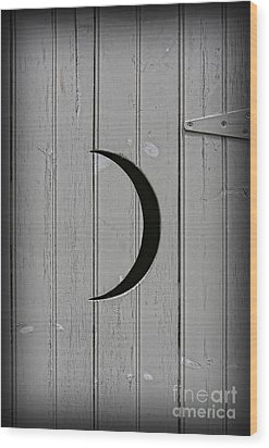 The Moonlight Outhouse Wood Print by Lee Dos Santos
