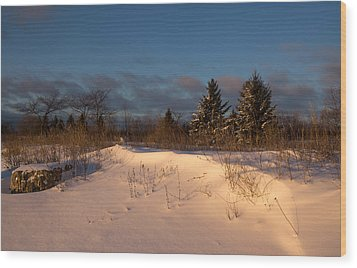 The Morning After The Snowstorm Wood Print by Georgia Mizuleva