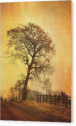 The Morning Tree Wood Print