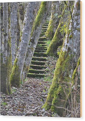 The Moss Stairs Wood Print by Kirt Tisdale