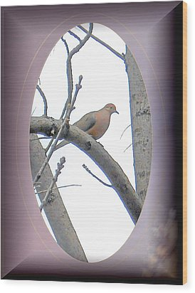 The Mourning Dove Wood Print by Patricia Keller
