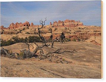 The Needles At Canyonlands National Park Wood Print