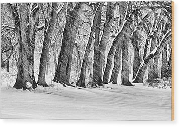 The Noreaster Bw Wood Print by JC Findley
