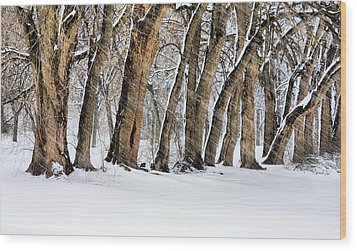 The Noreaster Wood Print by JC Findley
