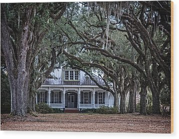 The Oaks Plantation Wood Print by Andy Crawford