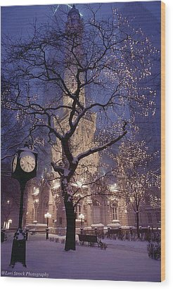 The Old Chicago Water Tower Wood Print