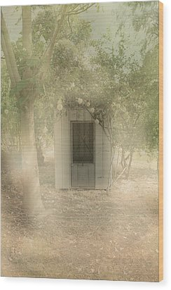 The Old Chook Shed Wood Print by Elaine Teague