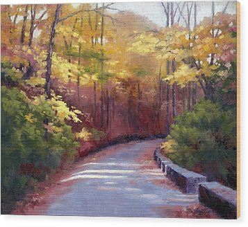 The Old Roadway In Autumn II Wood Print by Janet King