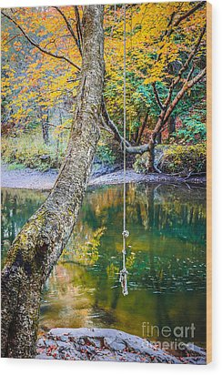 The Old Swimming Hole Wood Print by Edward Fielding