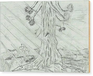 Wood Print featuring the drawing The Old Tree In Spring Light  - Sketch by Felicia Tica