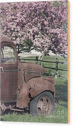 The Old Truck And The Crab Apple Wood Print by Edward Fielding