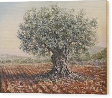 The Olive Tree In The Valley Wood Print by Miki Karni