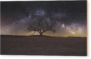 The One Wood Print by Aaron J Groen