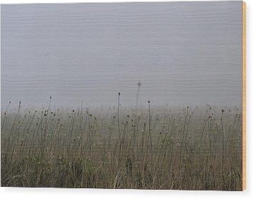 The Onion Field Wood Print