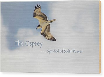 Wood Print featuring the photograph The Osprey by DigiArt Diaries by Vicky B Fuller
