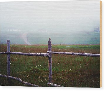 The Other Side Of The Field Wood Print by Zinvolle Art