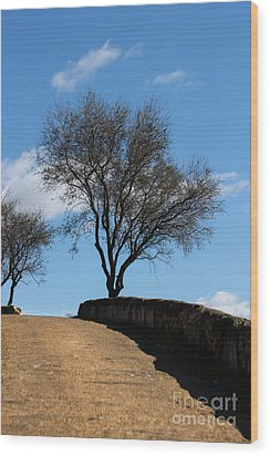 The Other Side Of The Wall Wood Print by Edgar Laureano