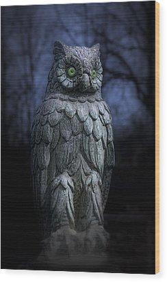 The Owl Wood Print by Tom Mc Nemar