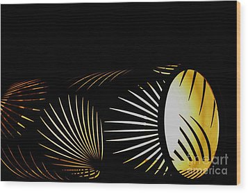 The Palm Frond Light Wood Print by Darla Wood
