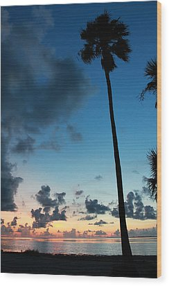 The Palm Majestic Sunset Beach Tarpon Springs Florida Wood Print by Robin Lewis
