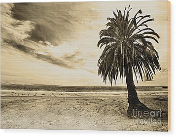 The Palm Swayed As The Storm On The Ocean Blew In Wood Print by Artist and Photographer Laura Wrede