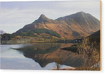 Wood Print featuring the photograph The Pap Of Glencoe by Jacqi Elmslie
