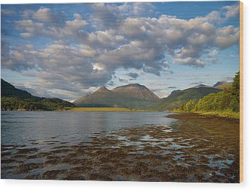 Wood Print featuring the photograph The Pap Of Glencoe by Stephen Taylor
