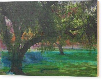 The Park Wood Print by Athala Carole Bruckner