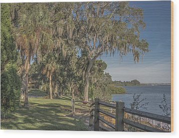 Wood Print featuring the photograph The Park by Jane Luxton