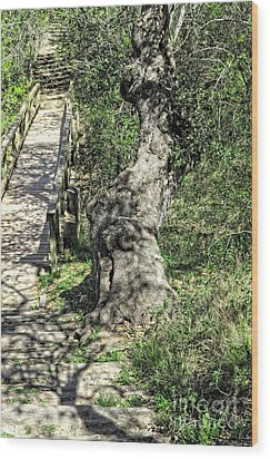 the Passageway Wood Print by Ella Kaye Dickey