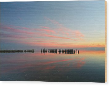 The Pastel Sea Wood Print by Larry Marshall