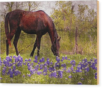 The Pasture Wood Print by Kathy Churchman