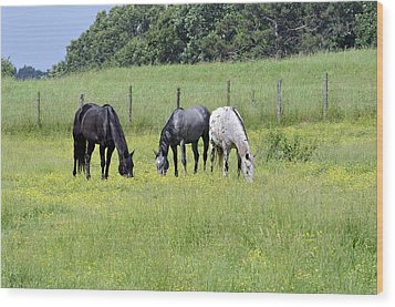The Pasture Wood Print by Susan Leggett