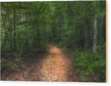 The Path Ahead Wood Print