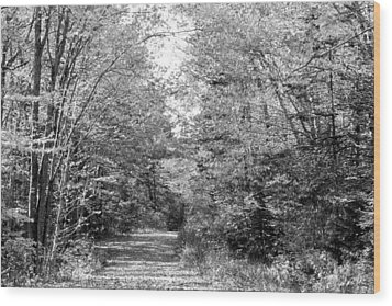 The Path Less Traveled Black And White Wood Print by Brett Pelletier