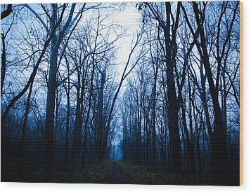The Path Wood Print by Off The Beaten Path Photography - Andrew Alexander