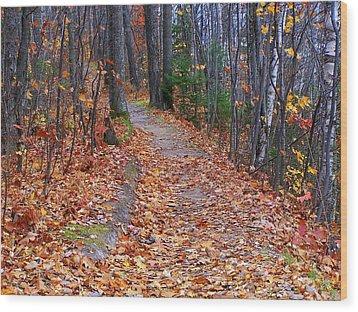 The Path On The Ridge Wood Print