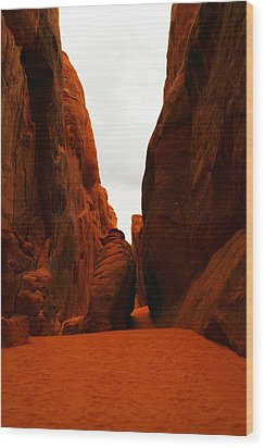 The Path To San Dune Falls Wood Print by Jeff Swan