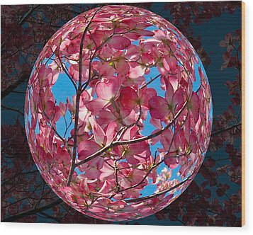 Wood Print featuring the photograph The Peach Tree Sphere by William Havle