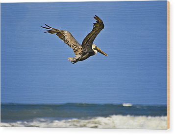 Wood Print featuring the photograph The Pelican And The Sea by DigiArt Diaries by Vicky B Fuller