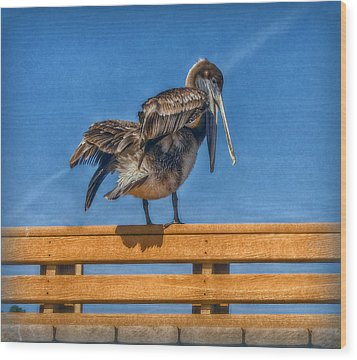 Wood Print featuring the photograph The Pelican by Hanny Heim