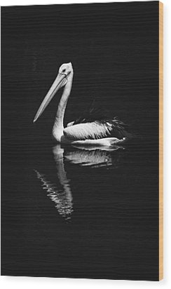 Wood Print featuring the photograph The Pelican by Zoe Ferrie