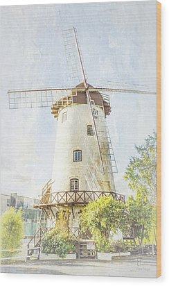 The Penny Royal Windmill Wood Print by Elaine Teague