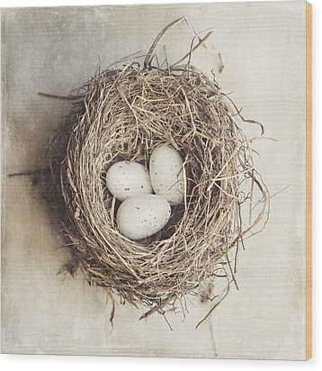 The Perfect Nest Wood Print by Lisa Russo