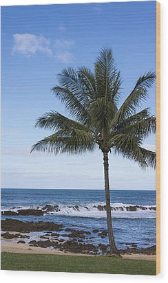 The Perfect Palm Tree - Sunset Beach Oahu Hawaii Wood Print by Brian Harig