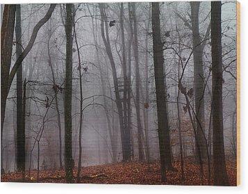 The Phantom Rises Wood Print by Betsy Knapp